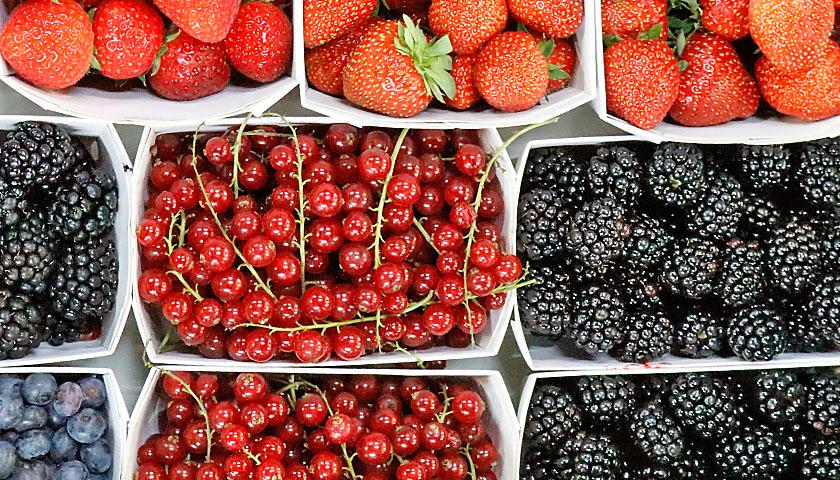 Früchte Rychard | Beeren
