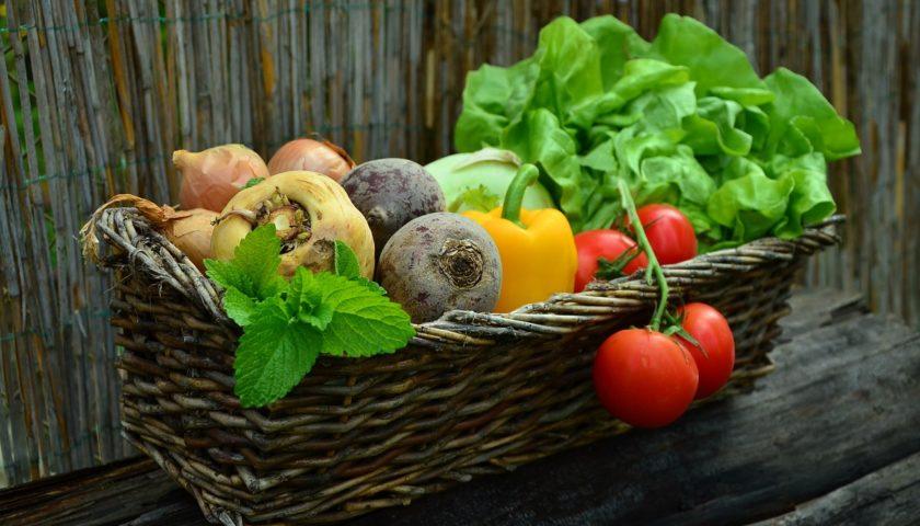 Früchte Rychard | Büro Lieferung