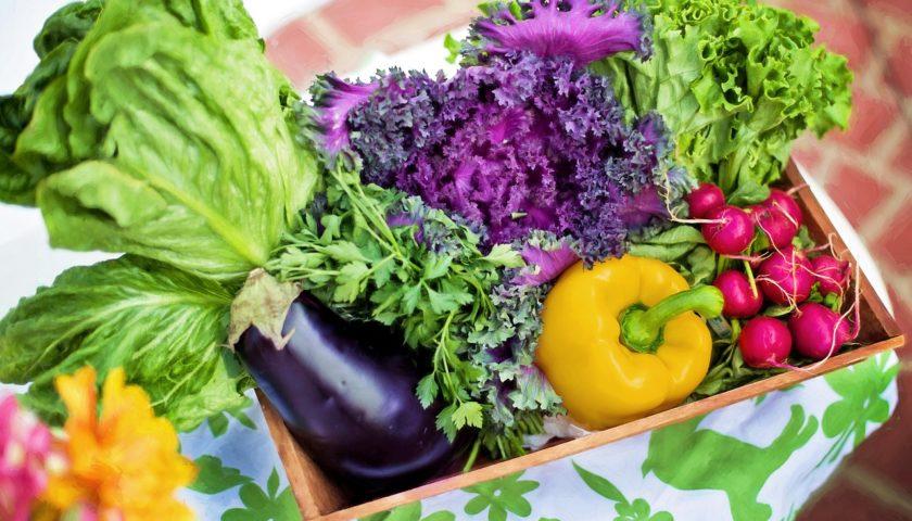 Früchte Rychard | Geschenke | Geschenkkorb